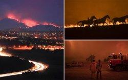 Австралийн нийслэл гал түймрийн аюулд өртөөд байна