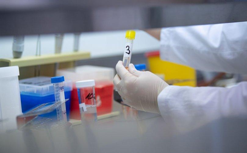 ДЭМБ: Covid-19 эсрэг 20 гаруй вакцин боловсруулж байна