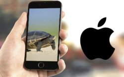 """""""Apple"""" хуучин загварын """"iPhone""""-уудаа зориудаар удаашруулж байжээ"""
