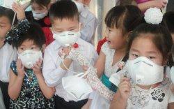 Монголд долоон улсаас 1.5 сая ширхэг амны хаалт орж иржээ