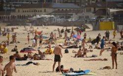 Австрали: Далайн эрэгт цугларахаа зогсоохгүй бол хөл хорино