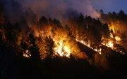 Хятадын Сычуань мужид ой хээрийн түймэр гарч, 19 хүн амиа алджээ
