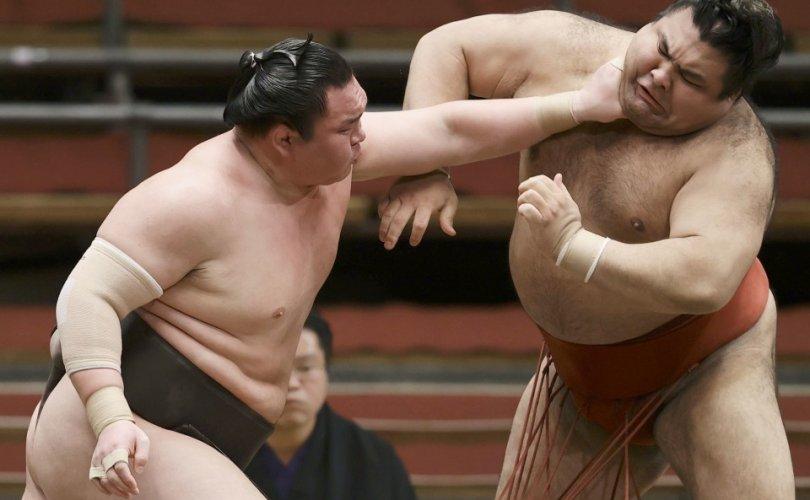 Какүрюү Ананд, Хакүхо нар ялалт байгууллаа