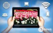 Алтанзул цэцгийн парадыг цахимаар хийв