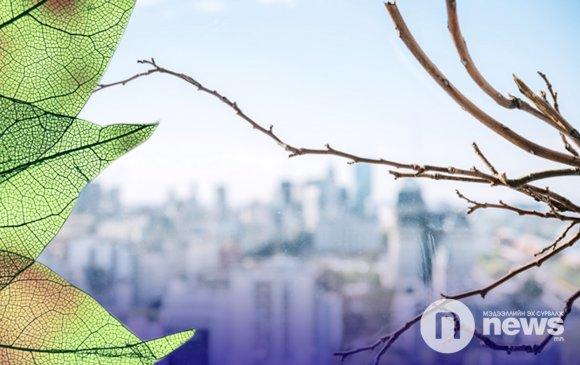 Улаанбаатар хотод өдөртөө 9-11 градус дулаан байна