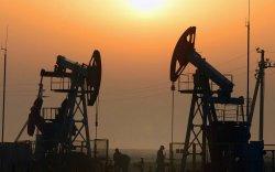 Эхний хоёр сард 954.8 мянган баррель боловсруулаагүй нефть экспортлов