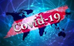 Коронавируст халдварын нөхцөл байдлын мэдээлэл