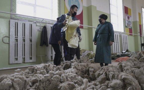 Дорнод аймагт ноолуурыг 105 мянган төгрөгөөр авч эхэлжээ