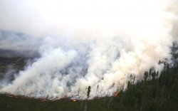 Ой хээрийн түймрээс урьдчилан сэргийлнэ үү