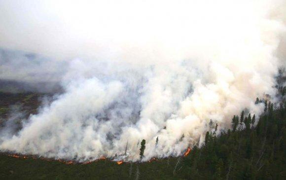 Түймрийн улмаас 2.9 тэрбум төгрөгийн хохирол учирчээ
