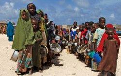 Цар тахлын улмаас 135 сая хүн өлсгөлөнд нэрвэгдэж магадгүй