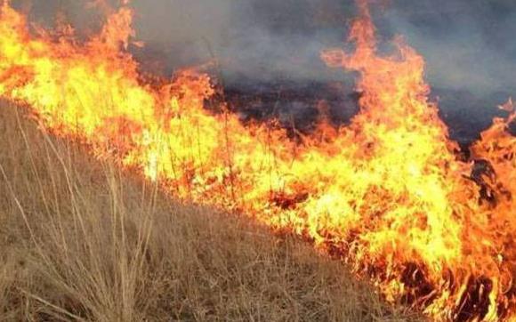 Хуурайшилттай үед ой хээрийн түймрээс сэрэмжлүүлж байна
