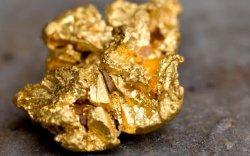 1.3 кг алт нуун, улсын хилээр нэвтрүүлэхийг завджээ