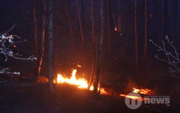 Соёмботой ууланд дахин түймэр гарч, цурманд оруулжээ