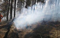 Богдхан ууланд дахин гарсан түймрийг цурманд орууллаа