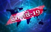 """""""Ковид-19"""" халдварын эргэн тойронд: тандалт, судалгааны тойм – 15"""