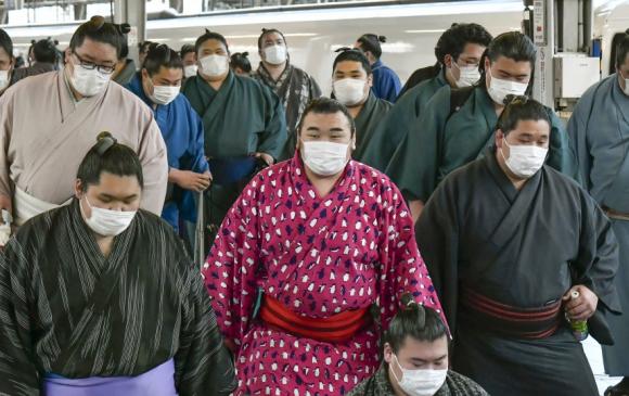 Японы сүмогийн холбоо бөхчүүдээ шинжилгээнд хамруулж эхэллээ