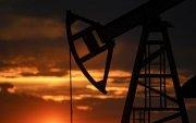 Нефть, байгалийн хийн нөөцийг Аудитын газар сөргөөр үнэлэв