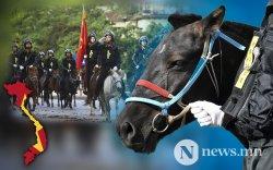"""Вьетнам цагдаа нарын Монгол морьдыг хүмүүс """"өхөөрдөж"""" байна"""