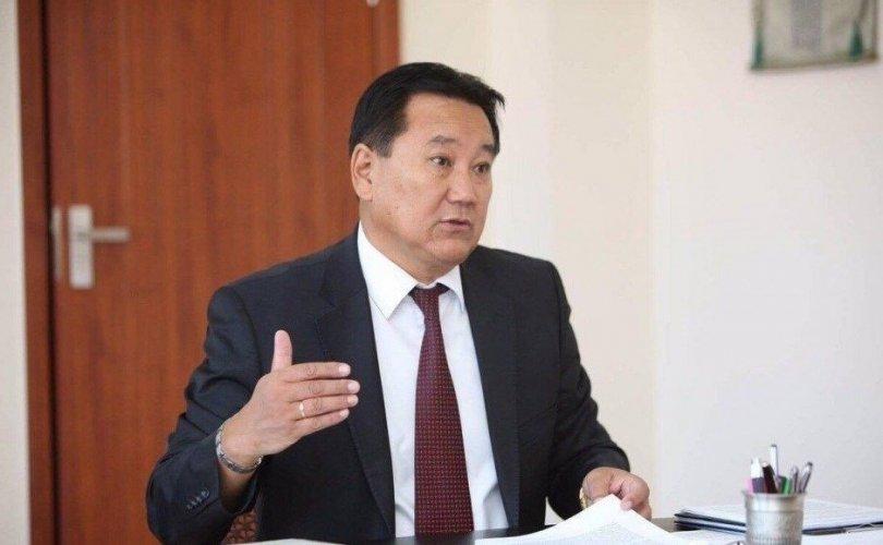 Д.Мөрөн: Монголд гадаадын иргэд хэдэн зуугаараа хууль бусаар оршин суух боломжгүй