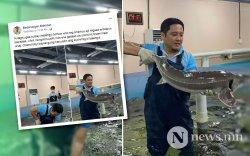 Э.Бадар-Ууган БНСУ-д загасны дэлгүүрт ажиллаж байна