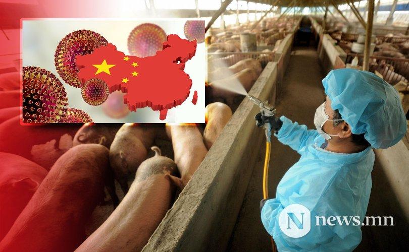 Цар тахал болох эрсдэлтэй томуугийн вирус Хятадад тархжээ