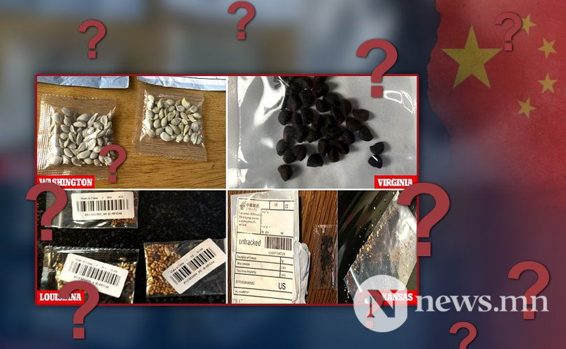 Америкчуудад үнэт эдлэлийн хайрцагтай нууцлаг үр Хятадаас ирэх болжээ