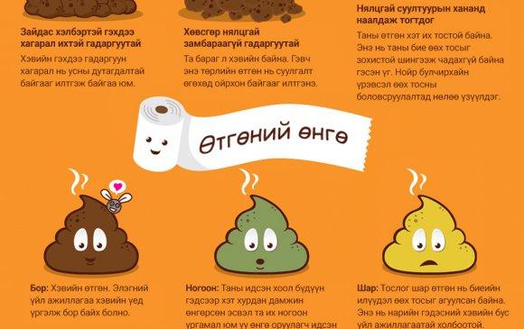 """Инфографик: Та өөрийн """"өтгөн""""-ий талаар хэр ихийг мэддэг вэ?"""