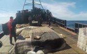 ОХУ Хойд Солонгосын загасчинд 4 жилийн хорих ял оноов