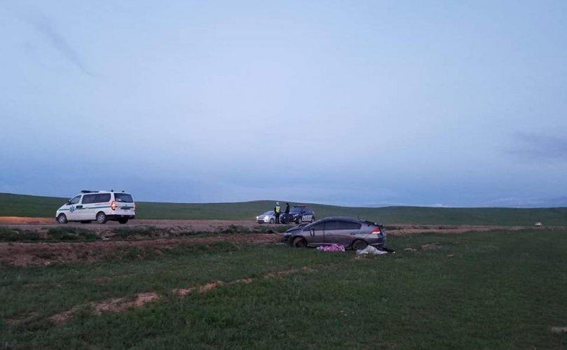 Наадмаар зам тээврийн ослоор 23 хүн нас баржээ