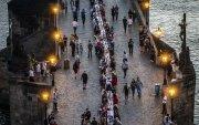 Чех: 515 метр урт ширээ засч, цар тахлыг ялснаа тэмдэглэжээ