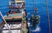 Номхон далайгаас 103 тонн хог хаягдлыг гарган авчээ