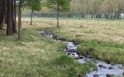 Тусгай хамгаалалттай газрыг нэмэгдүүлснээр усны нөөц сэргэж, түвшин нь нэмэгджээ
