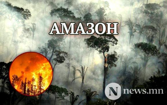 Амазоны ширэнгэн ой шатсаар байна