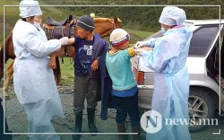 Тува: 3000 гаруй хүнийг тарваган тахлын эсрэг вакцинд хамруулна