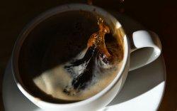 Нэг орос хүнд жилдээ 500 грамм кофе ногдож байна