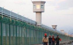 Уйгур моделийн бичлэг БНХАУ-ын хорих лагерийн байдлыг илчилжээ