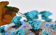 ОХУ: 2021 оноос сар бүр хэдэн сая тун вакцин үйлдвэрлэж чадна