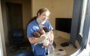 Бейрут: Дэлбэрэлтийн үеэр гурван нярайг аварсан сувилагч