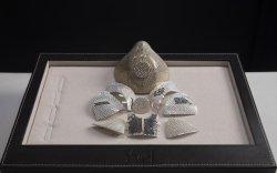 Алт, алмаазтай хамгийн үнэтэй амны хаалт бүтээжээ