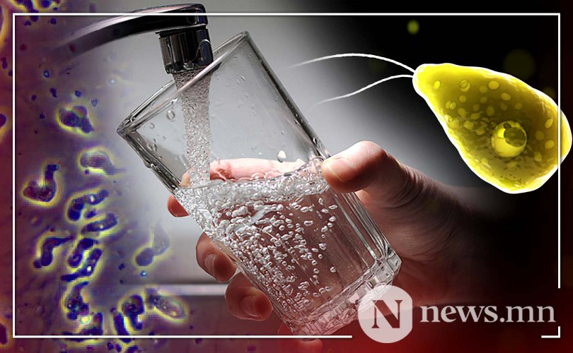 АНУ-ын найман хотын ундны уснаас тархи иддэг нян илэрчээ