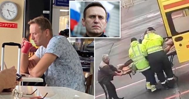 Навальный Орос руу буцаж үйл хэргээ үргэлжлүүлнэ