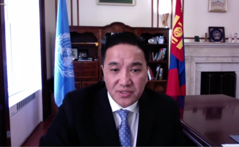 НҮБ-ын Хүүхдийн сангийн Гүйцэтгэх зөвлөлийн II хуралдаанд үг хэлэв