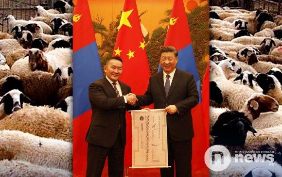 CGTN: 20 мянган хонь айсуй