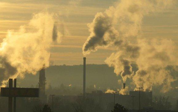 Covid-19-өөр нас барагсдын 15 хувь нь агаарын бохирдолтой холбоотой