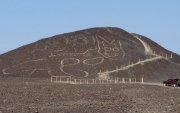 Перугийн Назка цөлөөс аварга том муурын дүрс олжээ