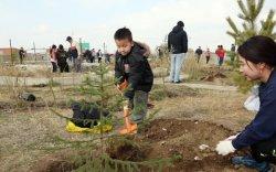 Мод тарих өдөр: Үндэсний цэцэрлэгт хүрээлэнд 2000 мод, сөөг тарив