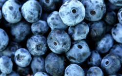 Амурын зэрлэг жимсийг Азийн зах зээл рүү экспортолно