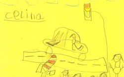 6 настнуудын зурсан зураг осол гаргасан жолоочийг олоход тусалж байна