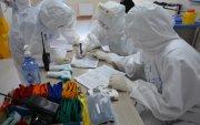 Covid-19 халдварын голомтын бүсийн шинжилгээний хуваарь